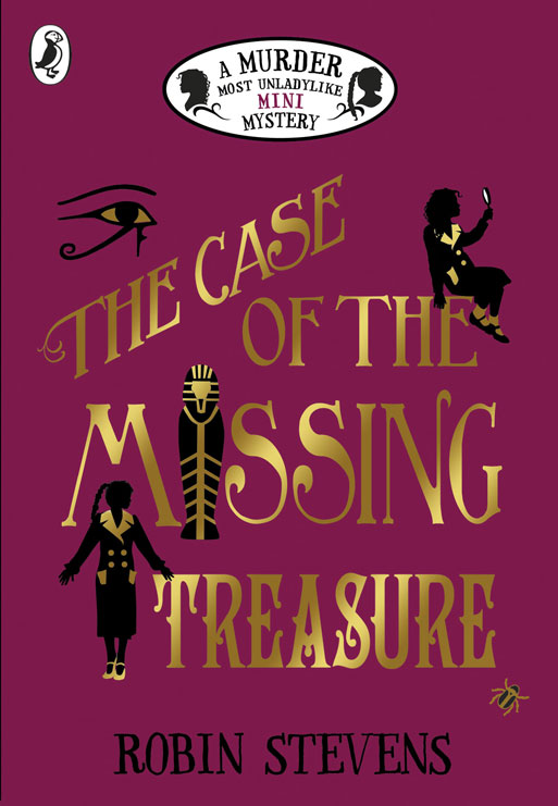 Image result for the case of the missing treasure